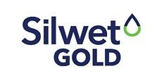 Logo Silwet Gold 233x118px